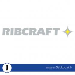 Stickers Ribcraft 2 couleurs pour bateau