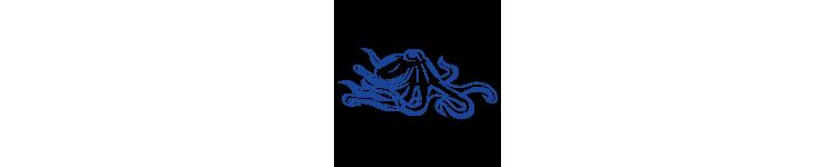 Octopodidés